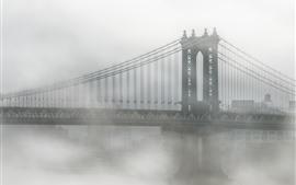 Estados Unidos, Nueva York, Brooklyn, puente, niebla, mañana