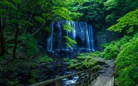 Водопад, ручей, деревья, зеленый, парк