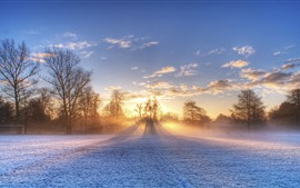 Winter, football ground, snow, trees, sun rays, morning