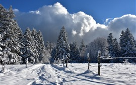 Aperçu fond d'écran Hiver, neige épaisse, clôture, arbres, froid
