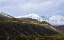 Montaña nevada de Animaqing, pendiente, nubes, hierba, China