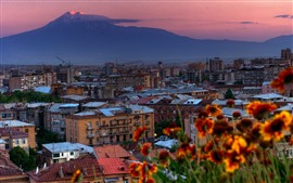 Preview wallpaper Armenia, city, buildings, flowers, dusk