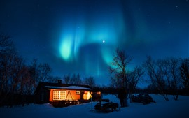 Preview wallpaper Aurora borealis, starry, house, trees, snow, night, lights