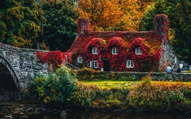 O outono, folhas vermelhas cobriu a casa, ponte, árvores