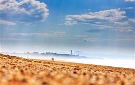 Playa, arenas, mar, ciudad, niebla