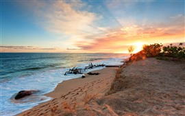 預覽桌布 海灘,沙灘,大海,波浪,日落