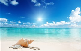 Preview wallpaper Beach, seashell, jewelry, sea, sunshine, blue