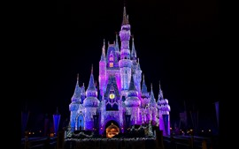 Preview wallpaper Beautiful Disneyland, castle, shining lights, night