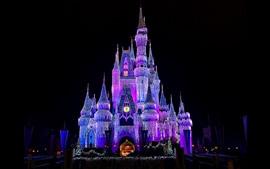 Hermoso Disneyland, castillo, luces brillantes, noche