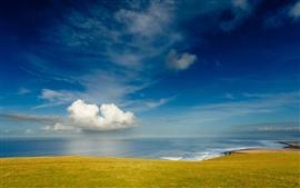 Hermosa costa, mar, prado verde, nubes blancas.