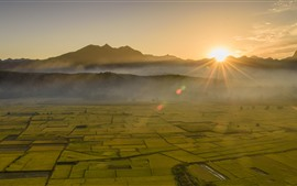 Preview wallpaper Beautiful golden fields, sun rays, fog, morning