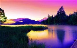 Bela natureza paisagem, lago, grama, árvores, nevoeiro, cores