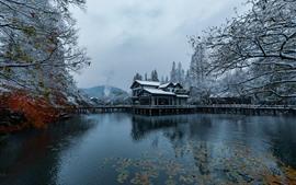 Cenário bonito da neve, Hangzhou, parque, lago, árvores, casa, inverno