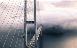Preview wallpaper Bridge, chains, height, river, fog, morning