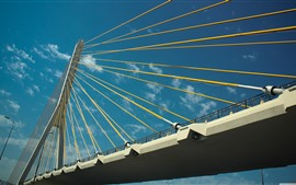 Puente, cadenas