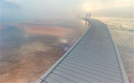 Preview wallpaper Bridge, fog, lake, Yellowstone National Park, USA