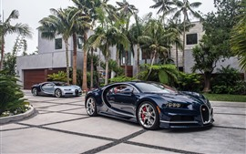 Preview wallpaper Bugatti blue supercar, palm trees