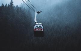 Teleférico, niebla, árboles, mañana, Canadá