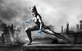 Preview wallpaper Catwoman, PC game