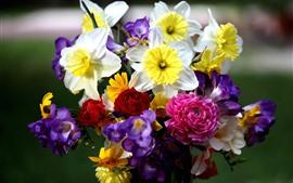 Flores de colores, narcisos, fresias, rosas, bouquet.