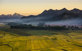 Preview wallpaper Countryside, golden fields, mountains, fog, morning
