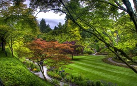 Preview wallpaper Garden, trees, meadow, green, footpath, people