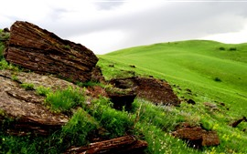Preview wallpaper Green meadow, rocks, spring