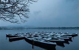 Hangzhou, lago, barcos, ramitas, nieve, invierno, parque, China