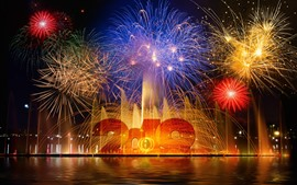 Feliz Ano Novo 2019, belos fogos de artifício, noite, água