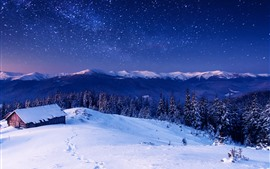 Preview wallpaper Hut, snow, winter, trees, starry, sky