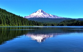 Preview wallpaper Mount Hood, mountain, trees, lake, water reflection, USA