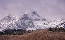Гора, снег, пик, туман, зима, природа