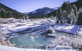 Mountains, trees, snow, winter, river