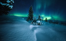 Preview wallpaper Northern lights, Norway, trees, snow, starry, night