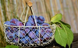 Preview wallpaper One basket plums