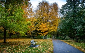 Preview wallpaper Park, trees, yellow and green leaves, path, bench, autumn