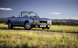 Preview wallpaper Peugeot 504 V6 convertible, green grass