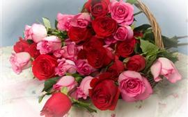 Rosas rosas y rojas, flores, cesta.