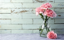 Preview wallpaper Pink carnation, flowers, vase
