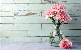 Clavel rosa, flores, jarrón.