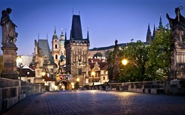 Preview wallpaper Prague, Czech Republic, Charles Bridge, city night, buildings, lights