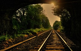 Preview wallpaper Railroad, track, trees, sun rays, tunnel