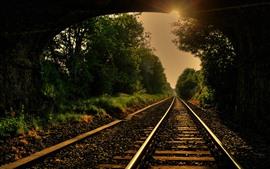 Ferrocarril, pista, árboles, rayos de sol, túnel.