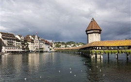 River, Bridge, birds, Cityscape, Lucerna, Suiza