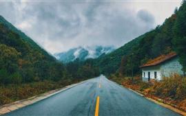 Camino, montañas, casa, niebla, otoño.