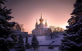 São Petersburgo, neve espessa, igreja, árvores, manhã, inverno