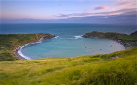 Preview wallpaper Sea, bay, grass, beautiful nature landscape
