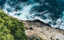 Море, пена, побережье, трава