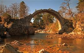 Puente de piedra, arco, rio, arboles.