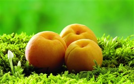 Preview wallpaper Three apricots, green plants